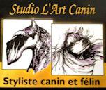 logo art canin